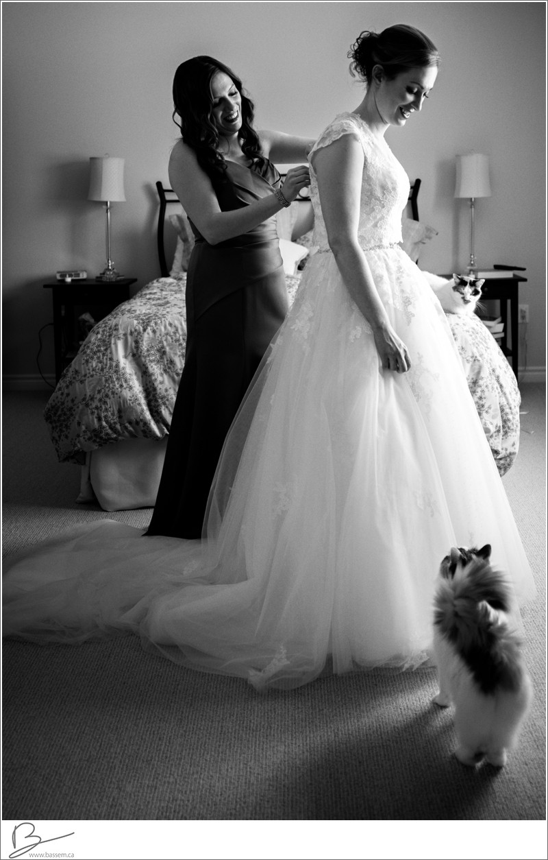 wedding-moment-with-brides-kitty-cat
