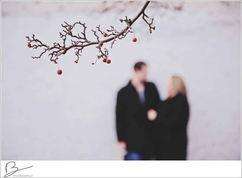 winter-engagement-photos-new-hamburg-1185