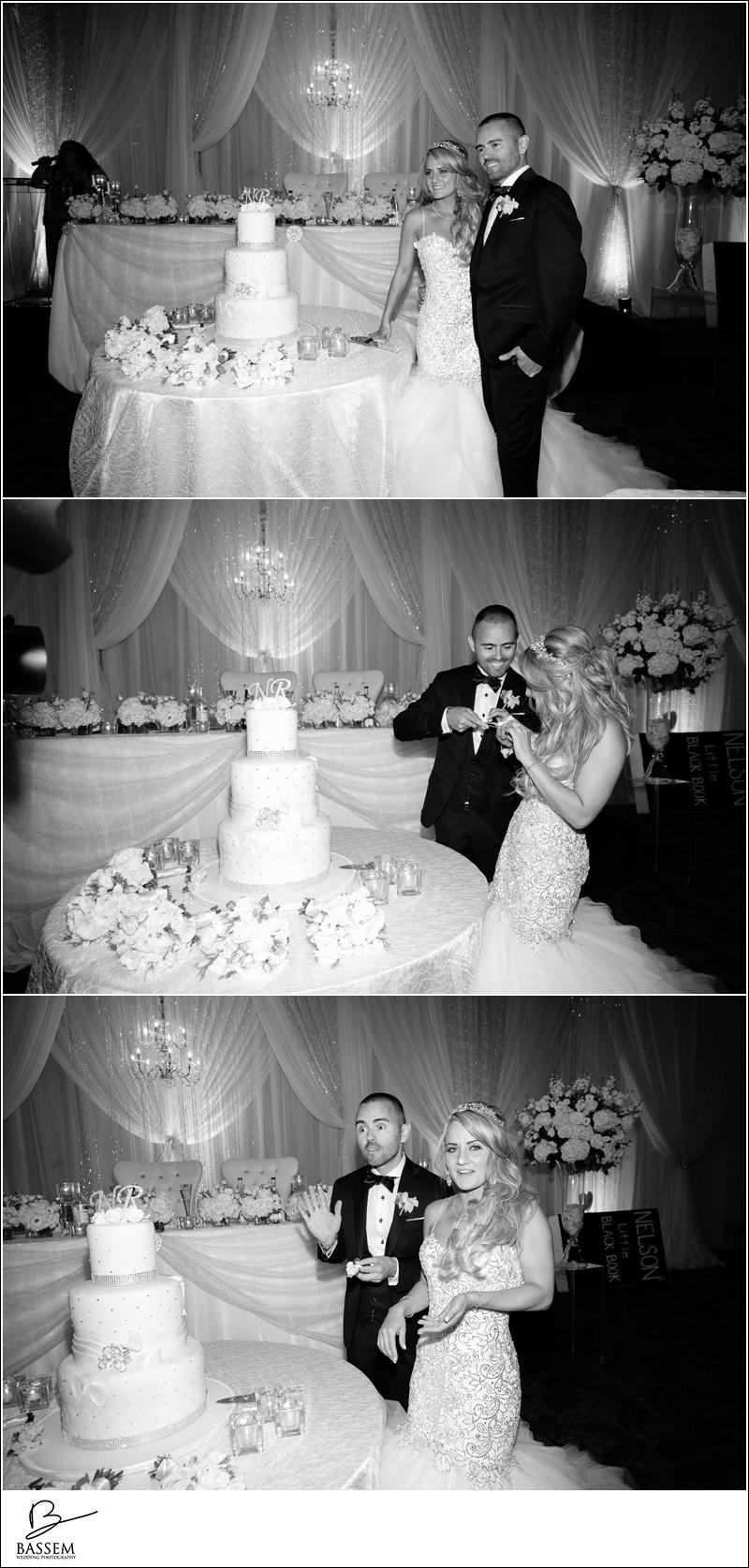 wedding-hazelton-manor-photography-1422