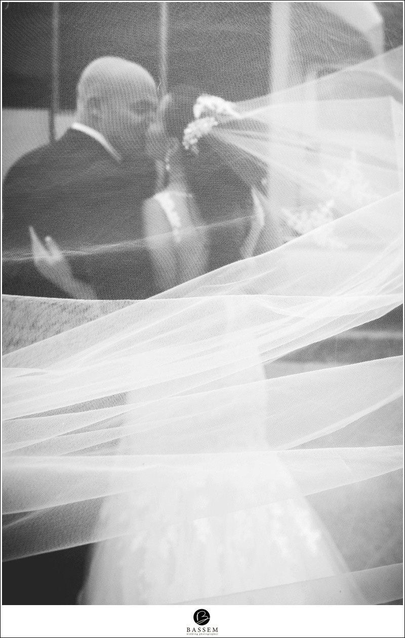 carmens-wedding-hamilton-photographer-163