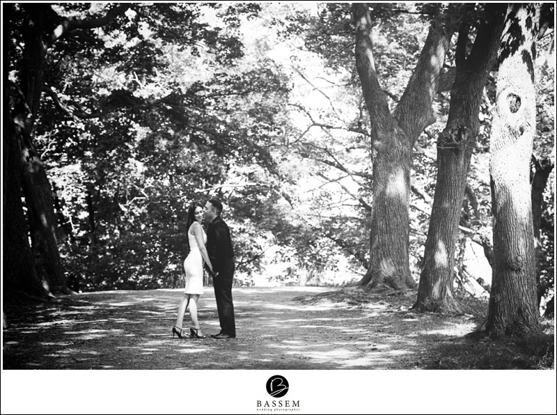 hamilton-dundurn-castle-engagement-photography-147